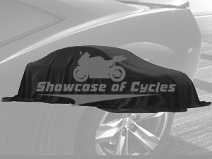 Used 2010 BMW K1300 in Plainfield, Illinois | Showcase of Cycles. Plainfield, Illinois